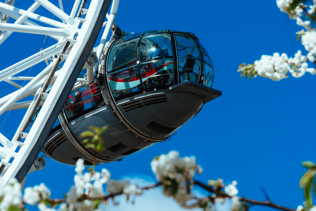 guild-photo-walk-london-london-eye-pod-blossom