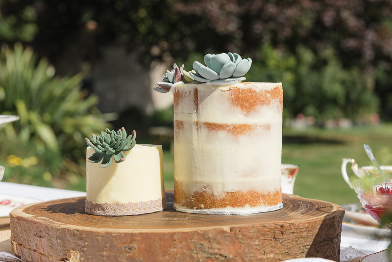 Wedding Succulent Cake at Lamberhurst Kent | Oakhouse Photography